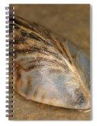 Zebra Mussel Spiral Notebook