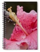 Art By Nature Spiral Notebook