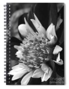 Dahlia Named Mary Eveline Spiral Notebook
