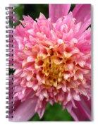 Dahlia Named Siemen Doorenbosch Spiral Notebook