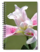 Double Oriental Lily Named Magic Star Spiral Notebook