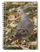 Dove Spiral Notebook