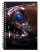 Dragonfish Spiral Notebook