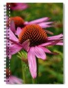 Eastern Purple Coneflower Spiral Notebook