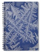 Frost On A Window Spiral Notebook