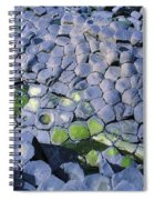 Giants Causeway, Co Antrim, Ireland Spiral Notebook