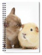 Kitten And Guinea Pig Spiral Notebook