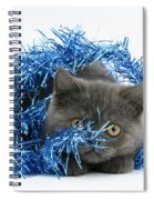 Kitten With Tinsel Spiral Notebook