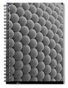 Mosquitos Eye Spiral Notebook