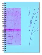 Omega Particle, 3rd Observation Spiral Notebook