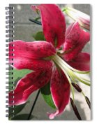 Orienpet Lily Named Scarlet Delight Spiral Notebook