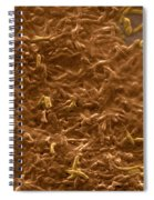 Potable Water Biofilm Spiral Notebook