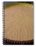 Queen Victoria Lily Spiral Notebook