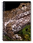 Rusty Robber Frog Spiral Notebook