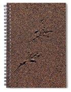 Sandmaps Spiral Notebook