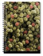 Sem Of Ergot Spiral Notebook