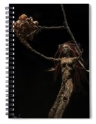 Seventh Year Prophecy Spiral Notebook