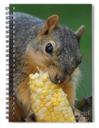 Squirrel Eating Sweet Corn Spiral Notebook