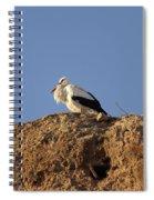 Storks In Marrakech Spiral Notebook
