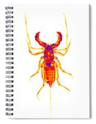 Whipscorpion X-ray Spiral Notebook