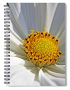 White Cosmos Spiral Notebook