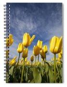 Woodburn, Oregon, United States Of Spiral Notebook