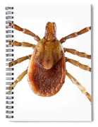 Yellow Dog Tick Spiral Notebook