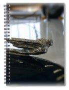 41 Packard Ornament Spiral Notebook