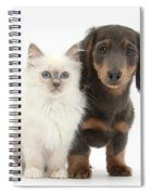 Blue-point Kitten & Dachshund Spiral Notebook