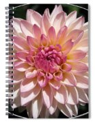 Dahlia Named Valley Porcupine Spiral Notebook