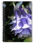 Double Columbine Named Light Blue Spiral Notebook