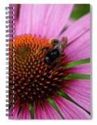 Eastern Purple Coneflower Spiral Notebook
