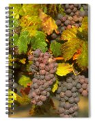 Grapes Growing On Vine Spiral Notebook