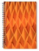 Mathematical Origami Spiral Notebook
