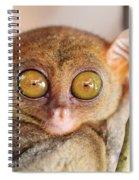 Phillipine Tarsier Spiral Notebook