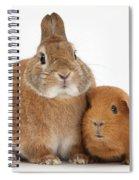 Rabbit And Guinea Pig Spiral Notebook
