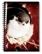 Red Barn Birdie Spiral Notebook