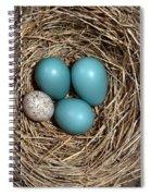 Robins Nest And Cowbird Egg Spiral Notebook