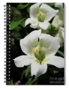 Snapdragon From The Mme Butterfly Mix Spiral Notebook
