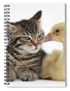 Tabby Kitten With Yellow Gosling Spiral Notebook