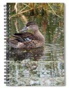 Teal Duck Spiral Notebook