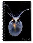 Cockatoo Squid Spiral Notebook