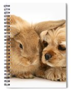 Cocker Spaniel And Rabbit Spiral Notebook