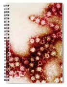 Coxsackie B4 Virus, Tem Spiral Notebook