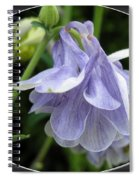 Double Columbine Named Light Blue Spiral Notebook