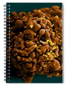 Hiv-infected H9 T Cell, Sem Spiral Notebook