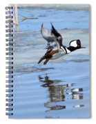 Hooded Merganser Spiral Notebook