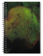 Luminescent Mushroom Panellus Stipticus Spiral Notebook