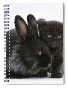 Kitten And Rabbit Spiral Notebook