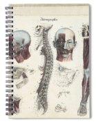 Anatomie Methodique Illustrations Spiral Notebook